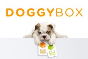 doggy-box